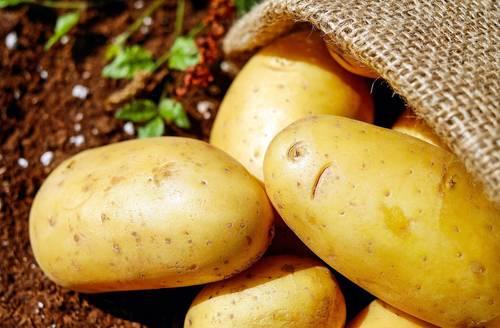 Картофельный сок при атрофическом гастрите как принимать