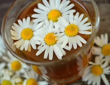 Ромашка при гастрите иязве желудка— отзывы, как пить