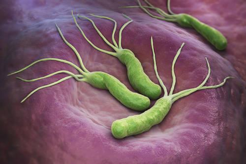 Как передается гастрит и что может стать причиной заболевания